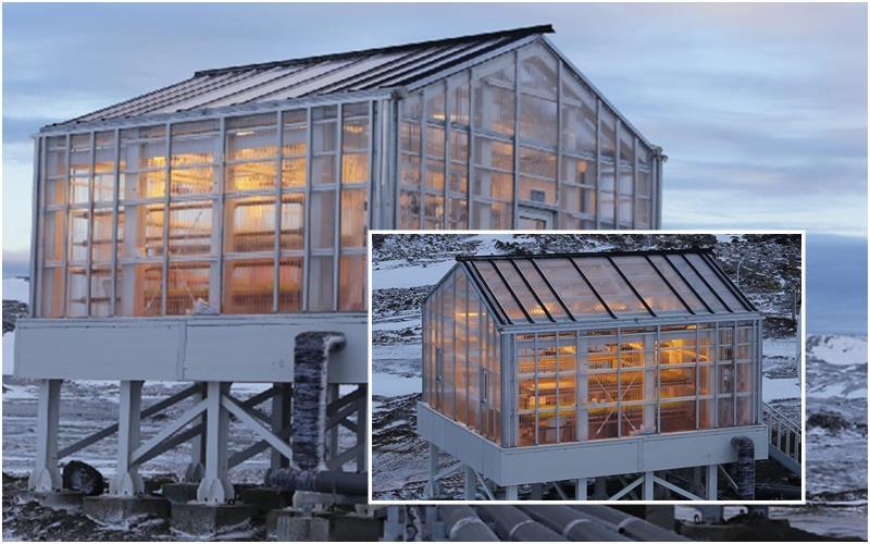 Il Plexiglas per l'indoor farming